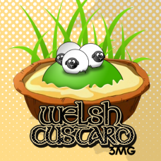 Welsh Custard